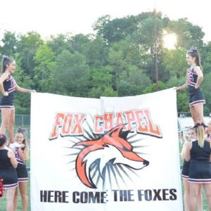 Cheerleaders Enthusiastic to Stir School Spirit