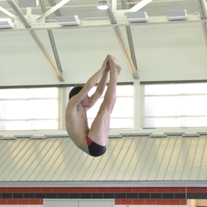 Foxes' Boys' Diving Team Laden with Talent