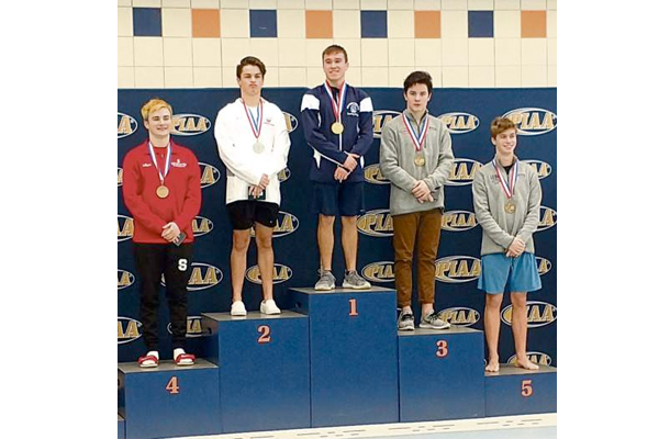 Fox Chapel diver Cagley claims bronze at PIAA championships