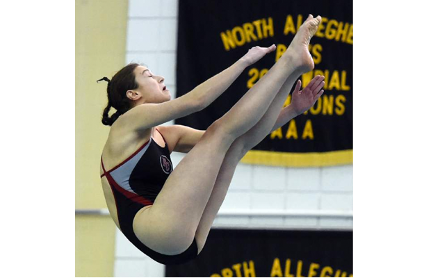 AAA Diving Results