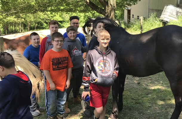 Working with horses to learn leadership skills